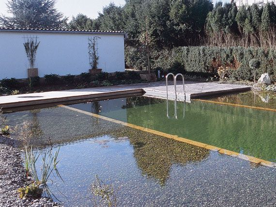 Estanques-piscina: un lago en casa